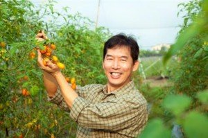 How to Become an Agricultural Worker